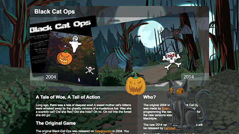 Black Cat Ops web site screen shot